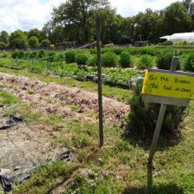 le jardin potager biologique de la ferme pédagogique du Peu