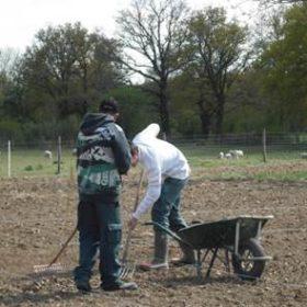 travaux agricole dans un le jardin du CPA Lathus