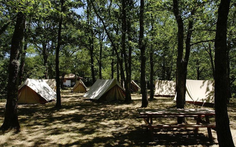 tentes sous les arbres