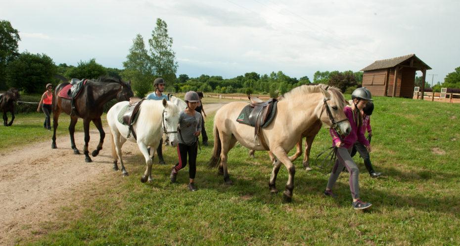 promenade à cheval dans la nature