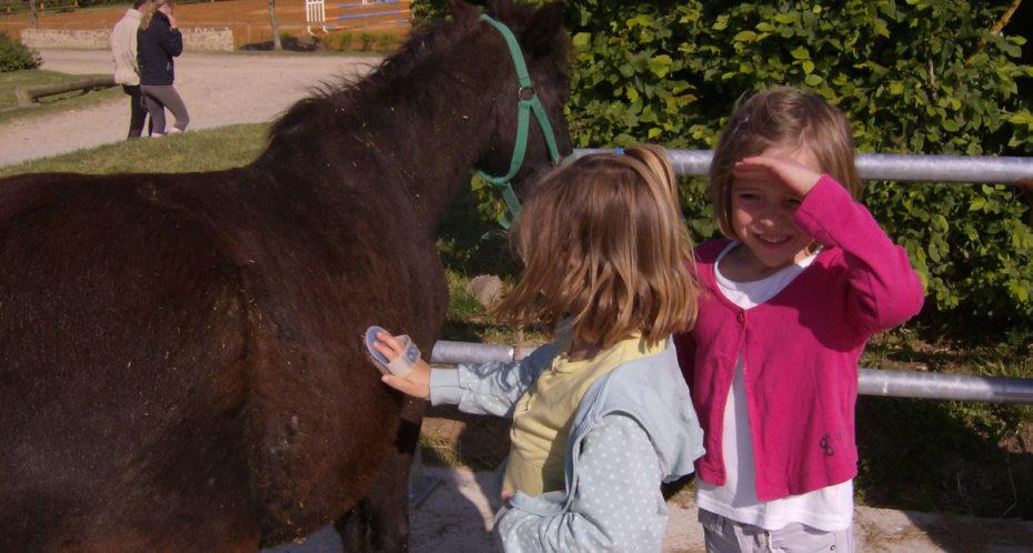 poney avec enfants
