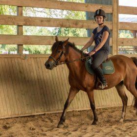 cheval avec cavalière dans la carrière