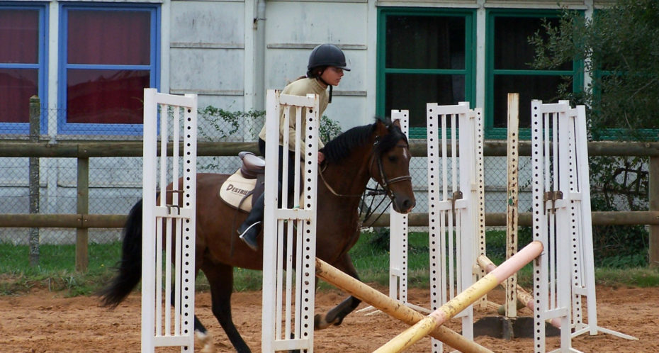 saut d'obstacle cheval