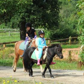 promenade en poney avec enfant