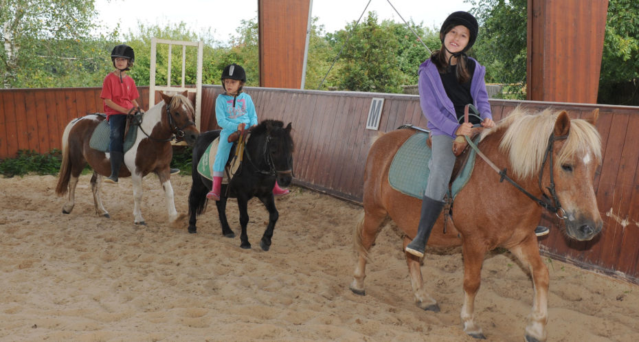 à cheval et à poney dans le manège